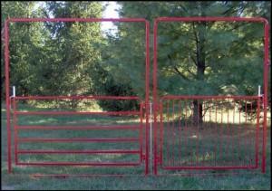 Walk-Through Gate